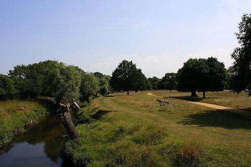 Parque Richmond