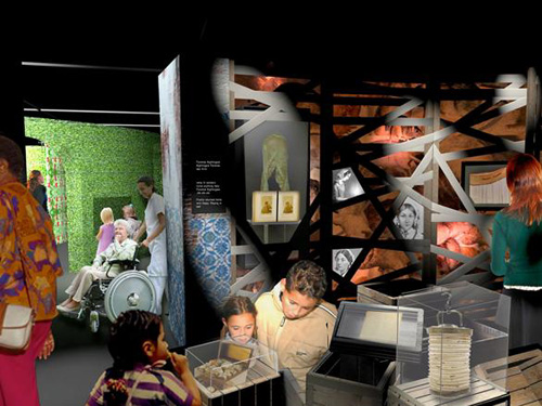 museo florence nightingale 2