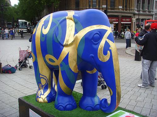 elephant family 2