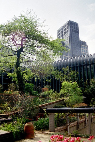 Museo de los Jardines